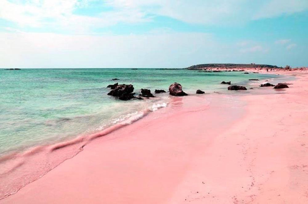 pink-blush-photography-inspiration-fashion-oracle-fox